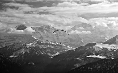 Alp Paragliders
